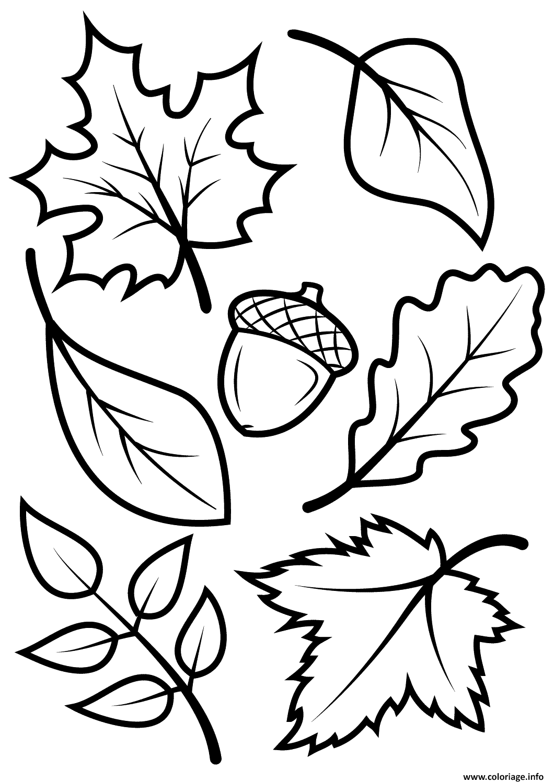 Coloriage automne leave nature - JeColorie.com