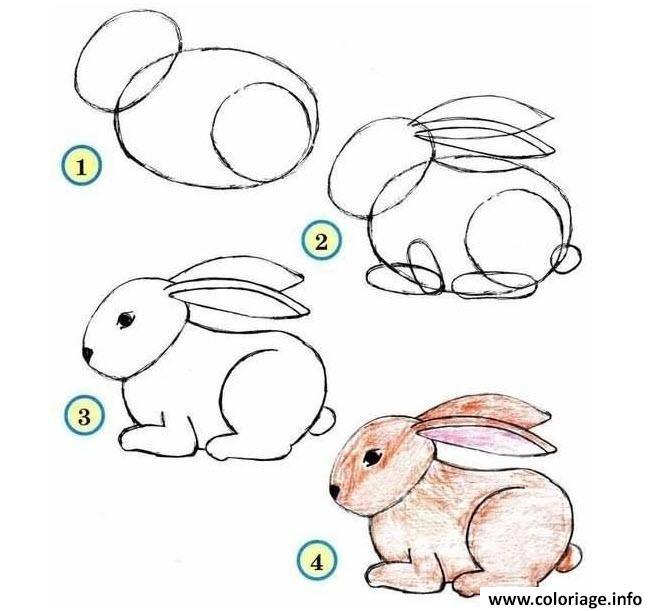 coloriage dessin facile a faire lapin - jecolorie