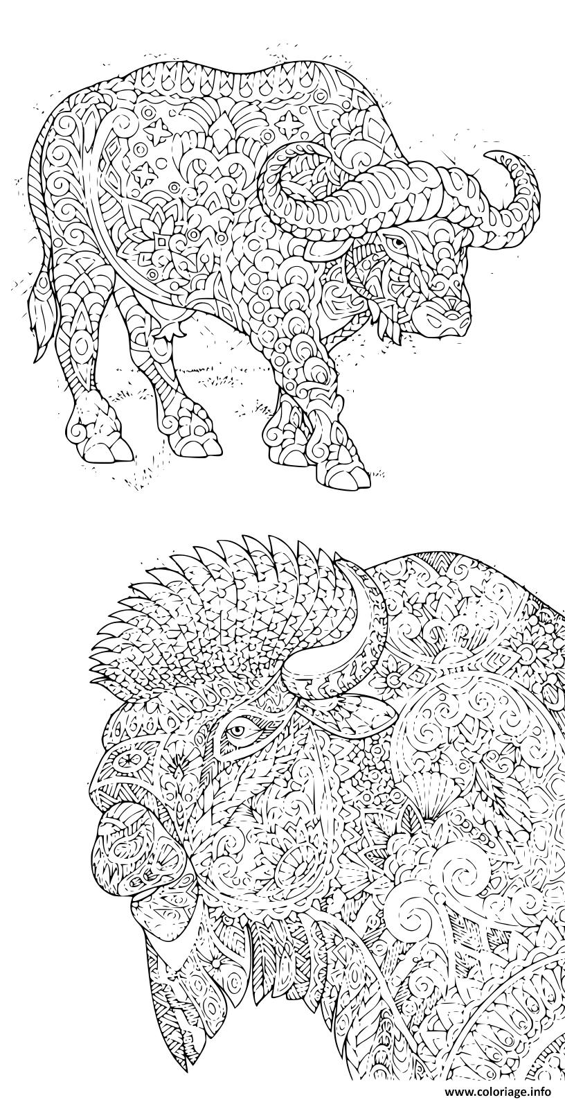 Dessin adultes avec bisons antistress Coloriage Gratuit à Imprimer