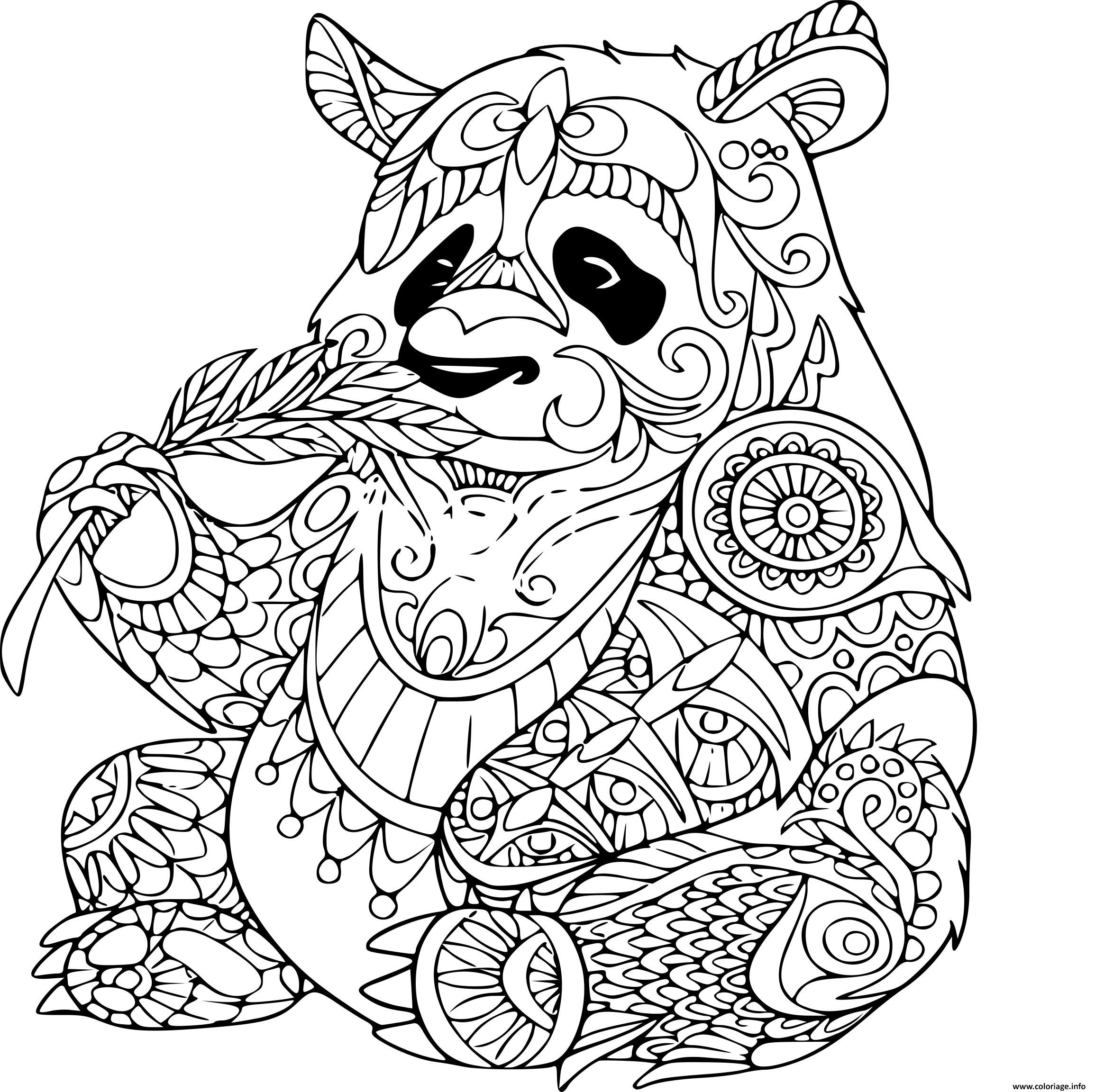 Coloriage Panda Mange Une Plante Adulte Animaux Zentangle Dessin