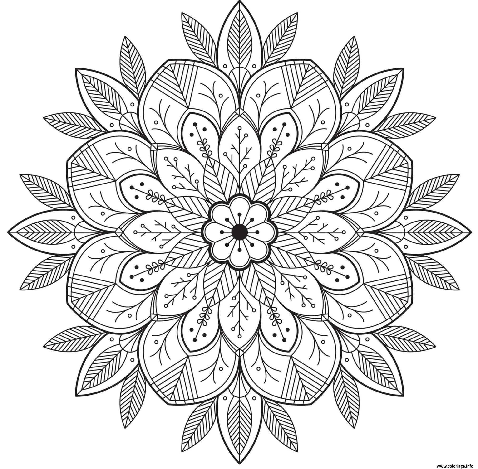 Coloriage Mandala Fleur Et Feuilles Pour Adulte Dessin ...