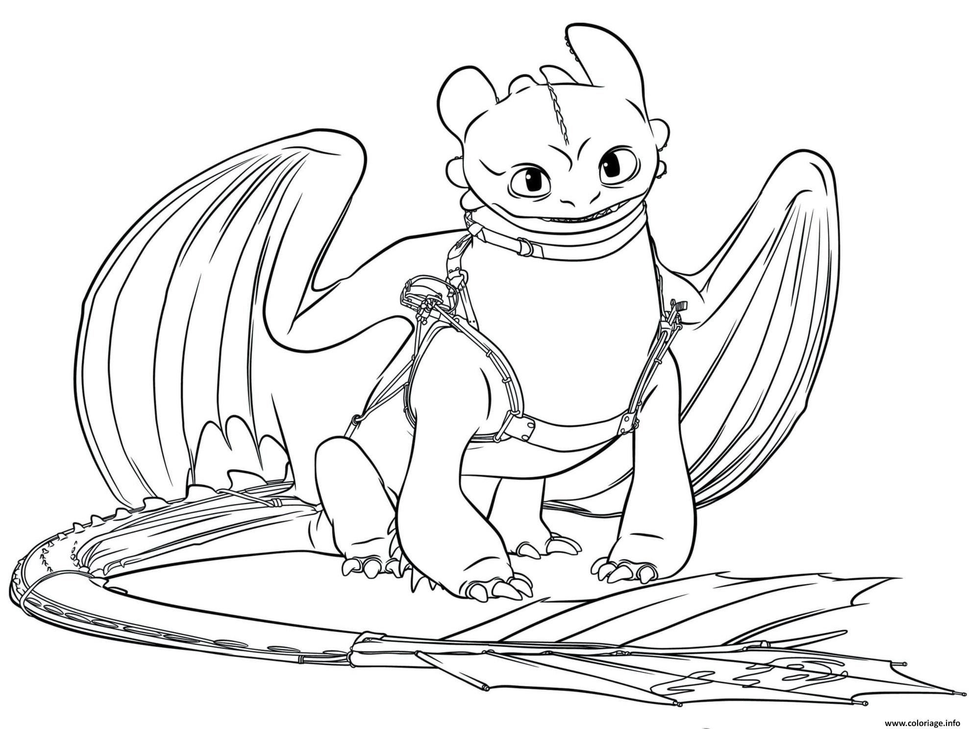 Coloriage Toothless Dragon 5 dessin