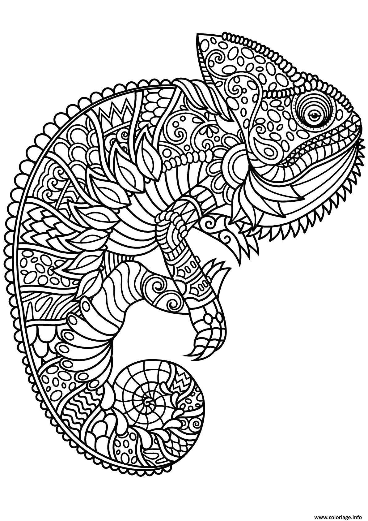 Dessin mandala cameleon Coloriage Gratuit à Imprimer