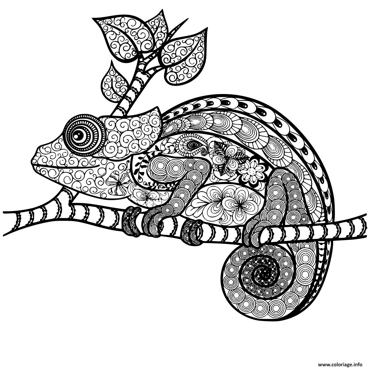 Dessin cameleon mandala adulte zentangle Coloriage Gratuit à Imprimer