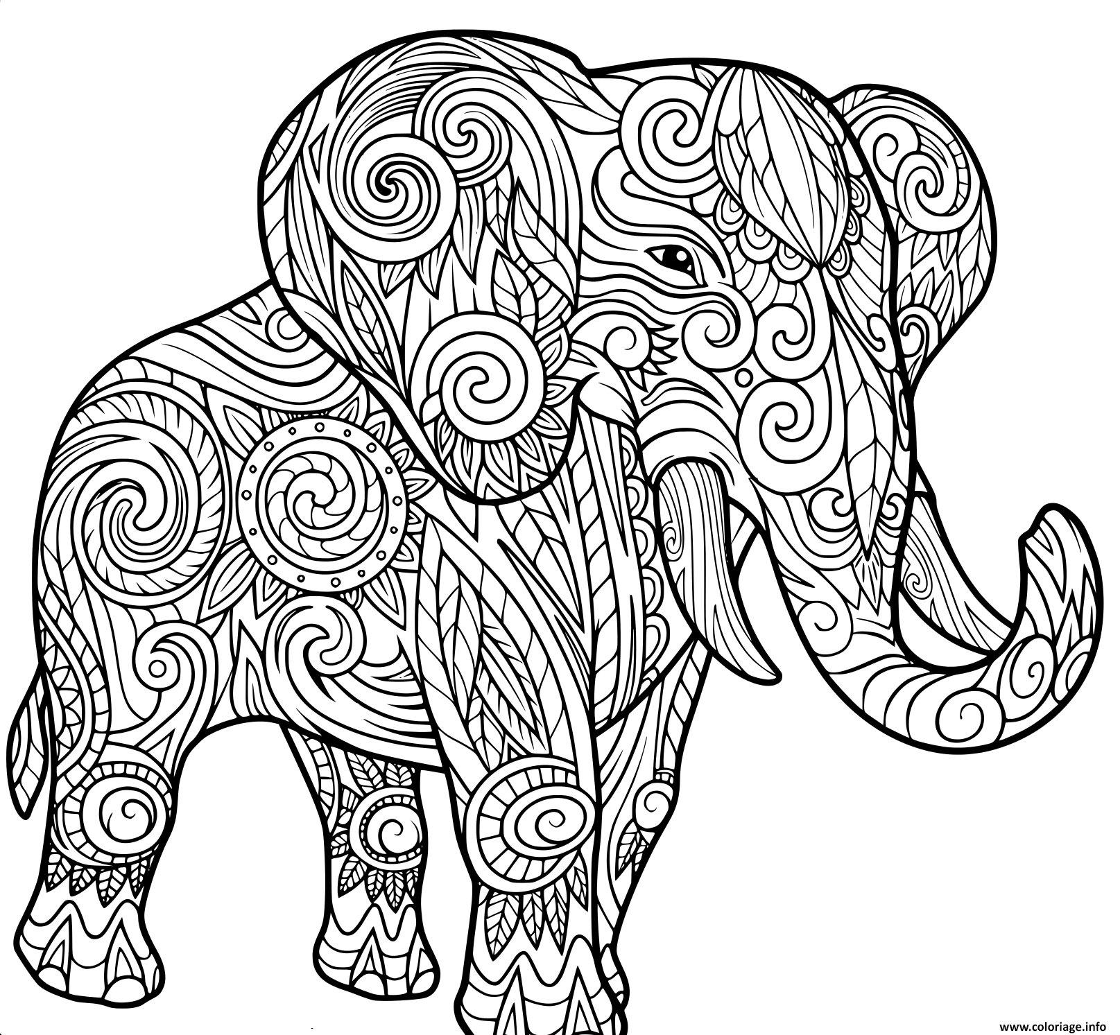 Coloriage Elephant Pour Adulte.Coloriage Elephant Pour Adulte Animaux Jecolorie Com