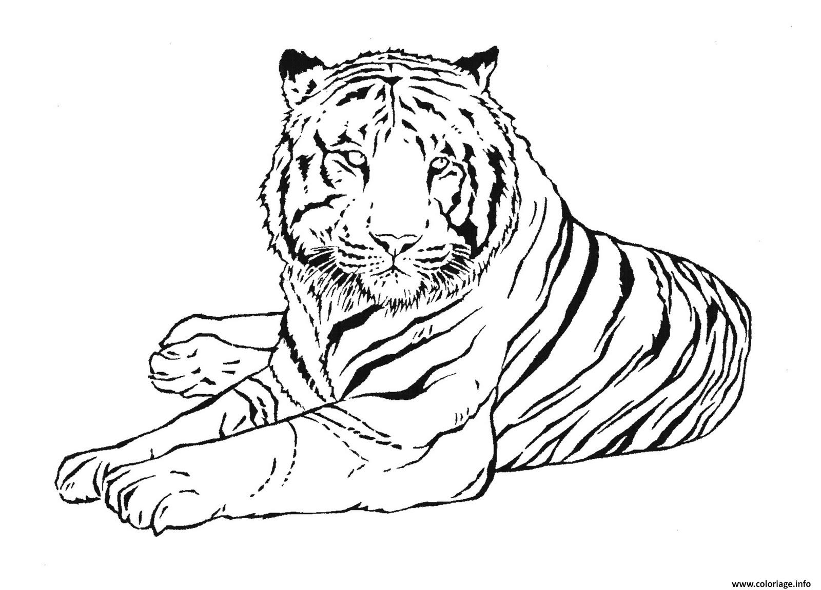 Dessin Tigre de la region argentine de Buenos Aires Coloriage Gratuit à Imprimer