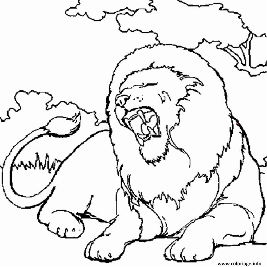 Coloriage Lion En Afrique Jecolorie Com