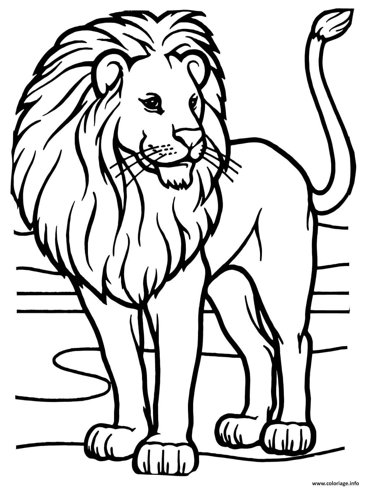 Coloriage Lion Dafrique Sauvage Jecoloriecom