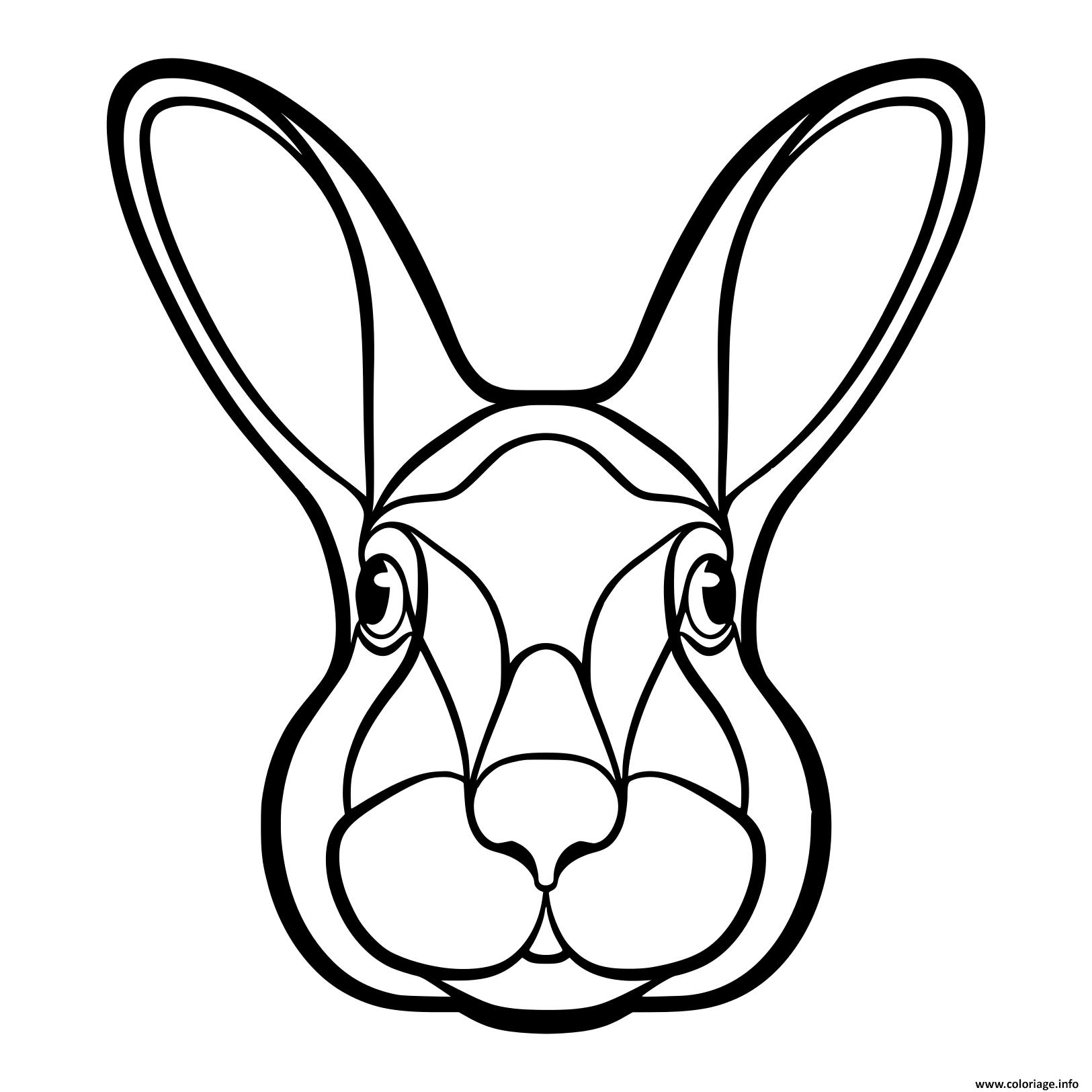Dessin tete de lapin lievre isole realiste Coloriage Gratuit à Imprimer