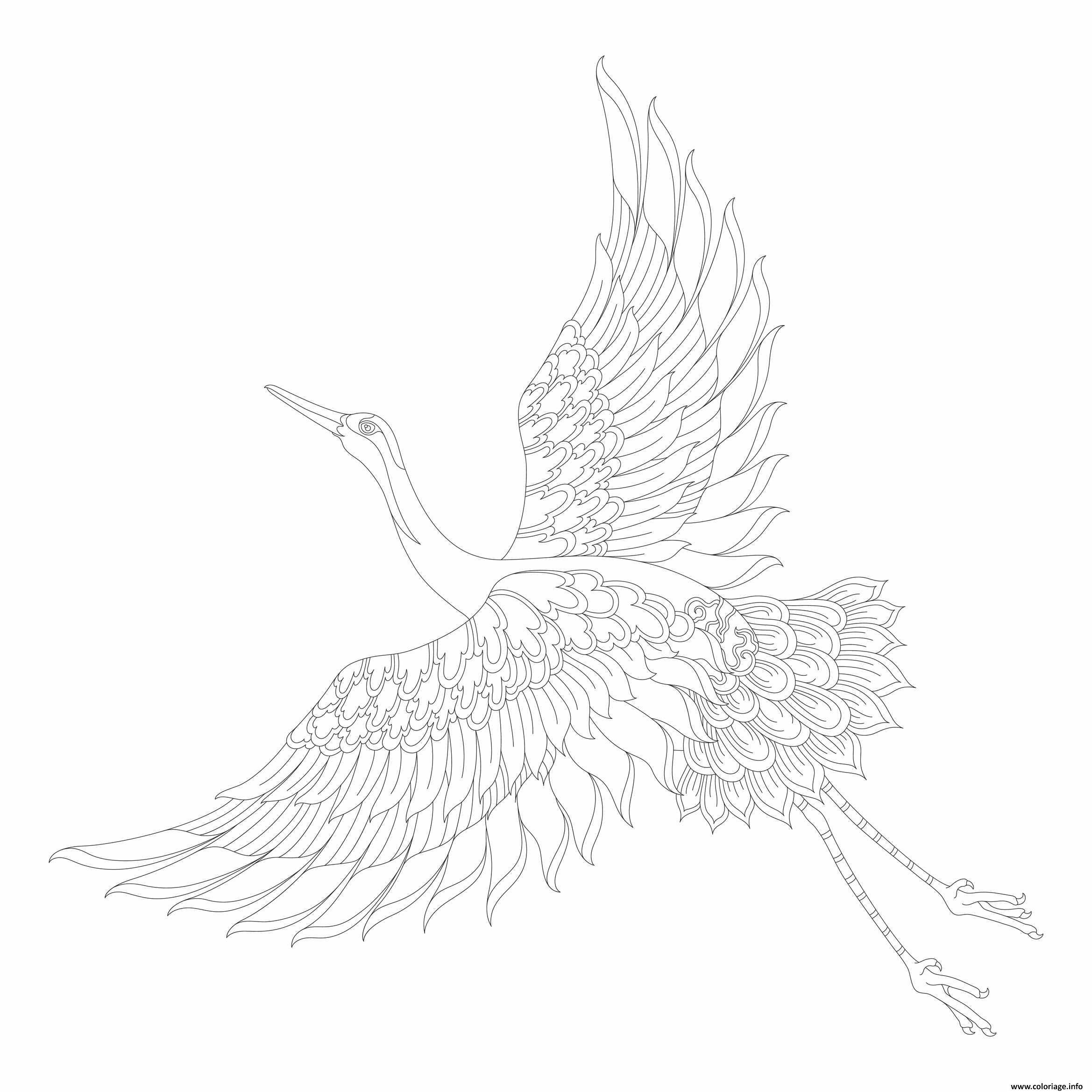 Coloriage Oiseau Gruides Animaux Adulte Jecolorie Com