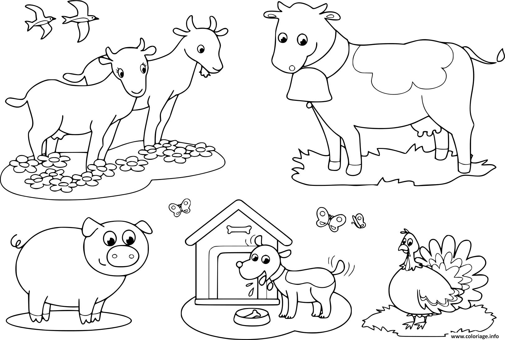 Dessin animaux de la ferme pour les enfants de chevre vache cochon dindon le chien et avale Coloriage Gratuit à Imprimer