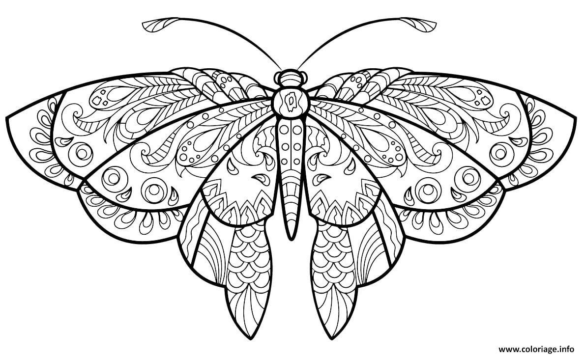 Coloriage Papillon Jolis Motifs 1 Jecolorie Com