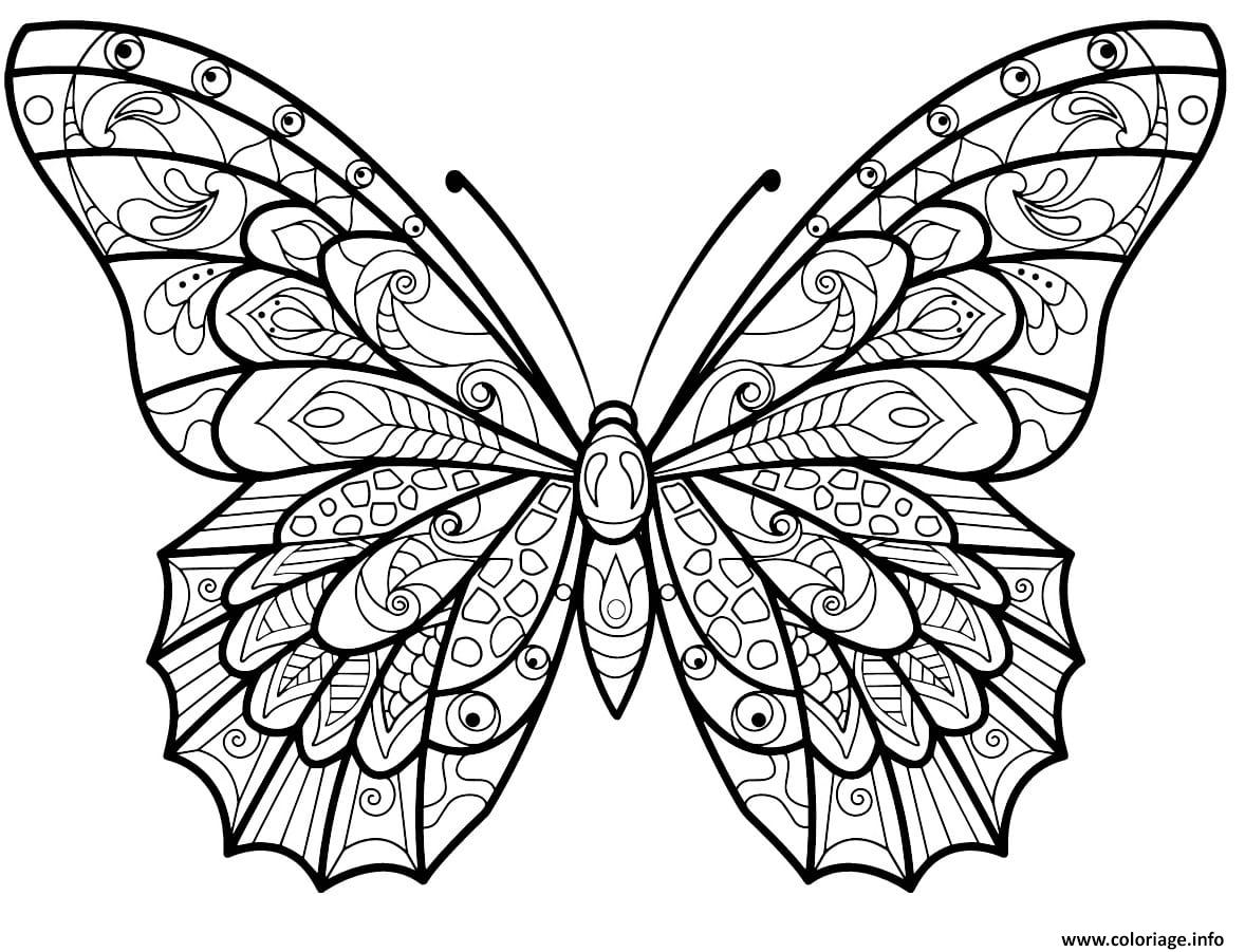 Coloriage Papillon Jolis Motifs 3 dessin