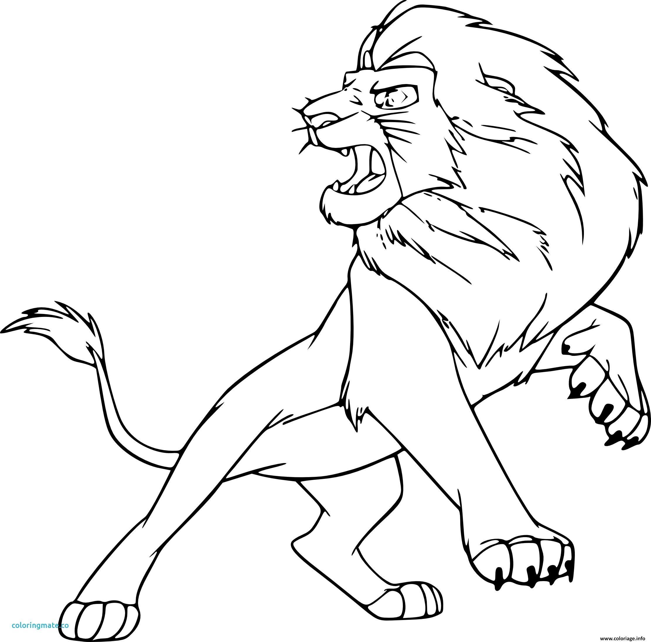 Coloriage Animaux Lion De Gulli Dessin