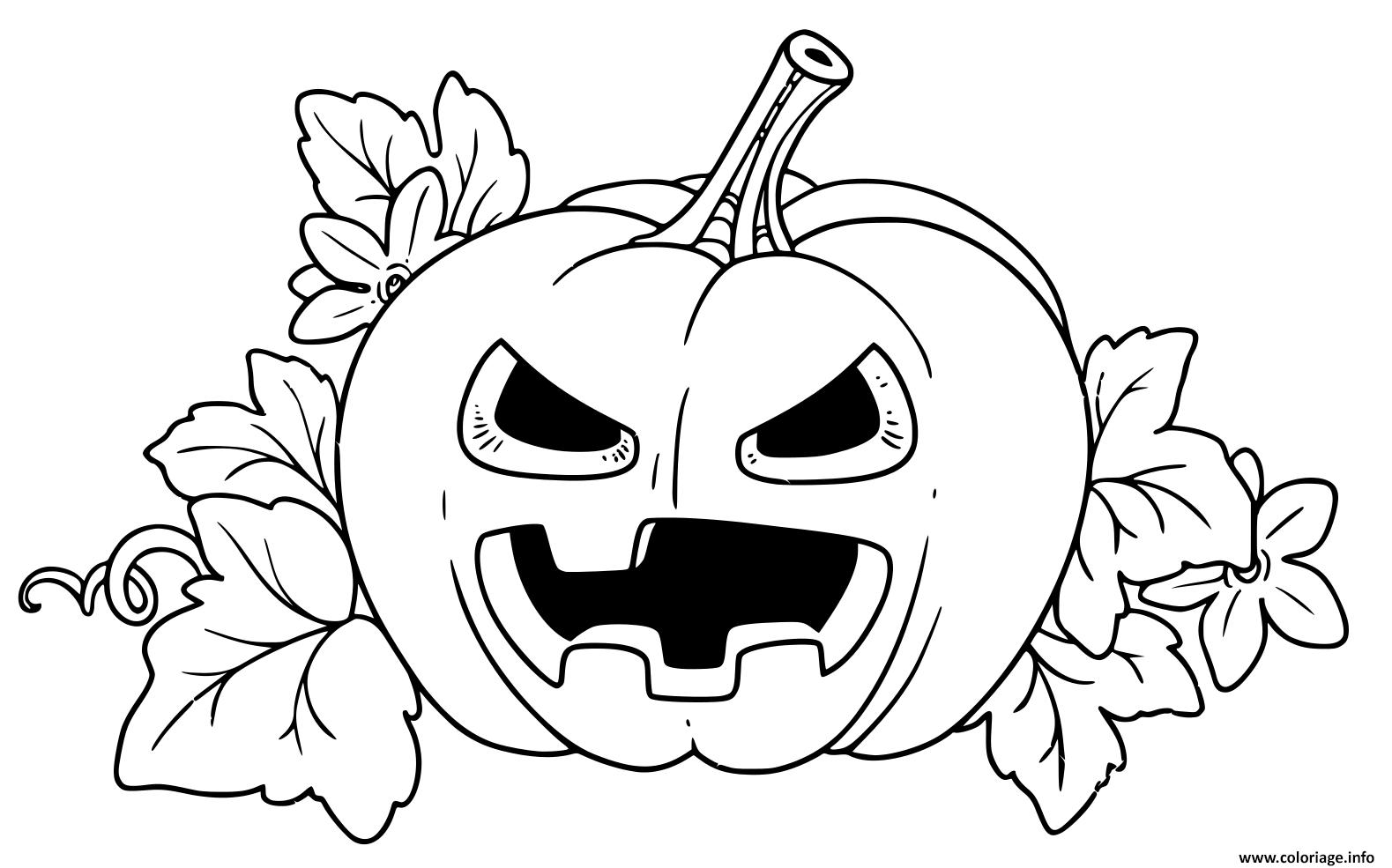 Coloriage Citrouille Halloween Fachee Couleur Jaune dessin