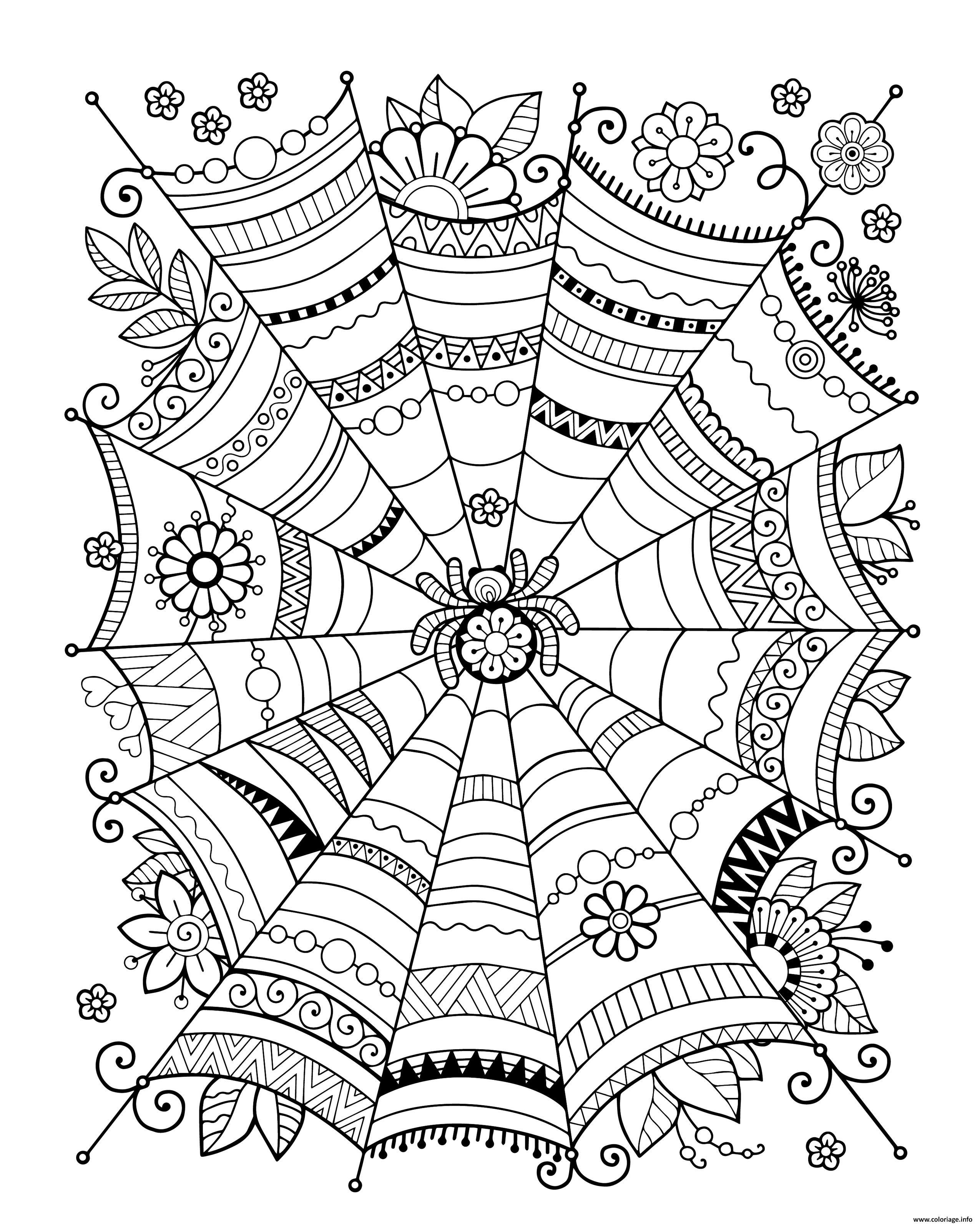 Dessin zentangle araignee adulte halloween Coloriage Gratuit à Imprimer