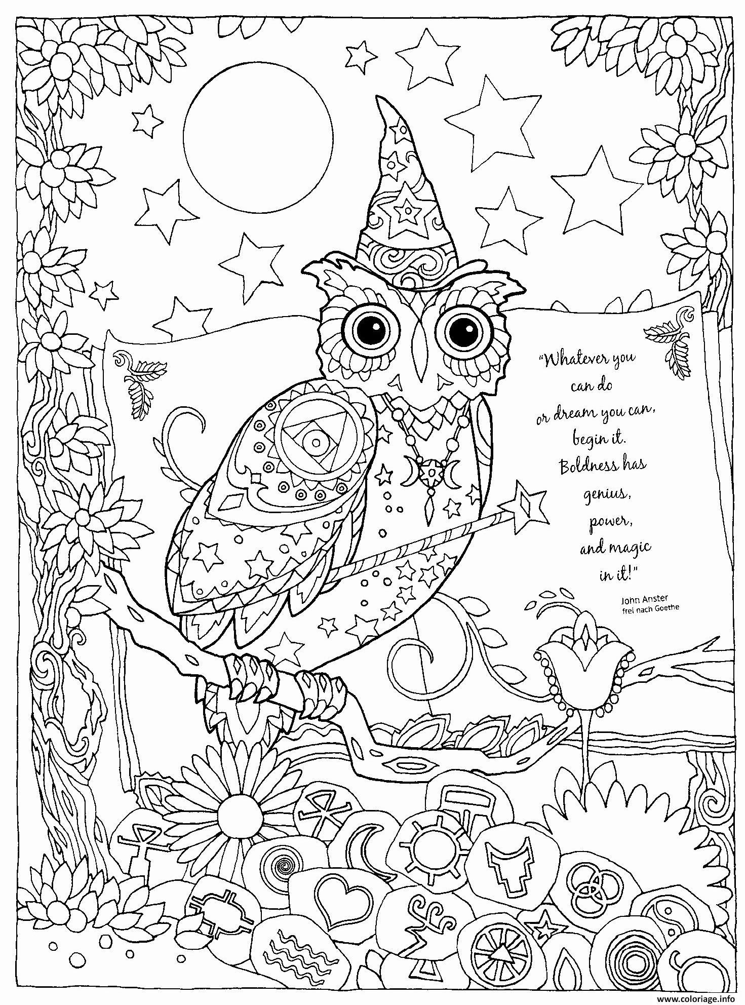 Coloriage Hibou Magique Et Puissant Halloween dessin