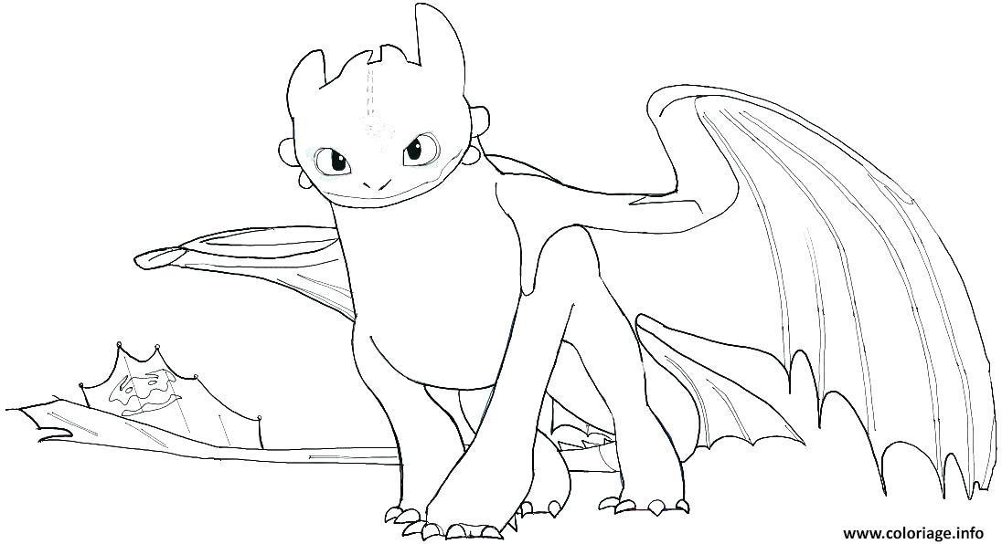 Dessin baby toothless how train your dragon Coloriage Gratuit à Imprimer