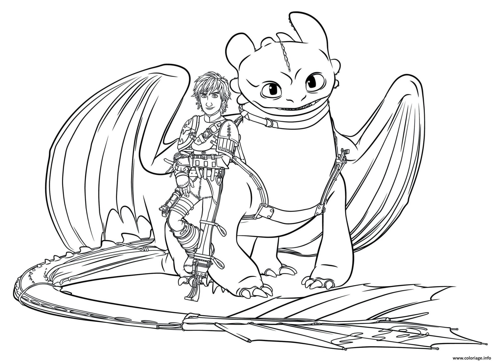 Coloriage Hiccup Toothless Dragon 5 dessin