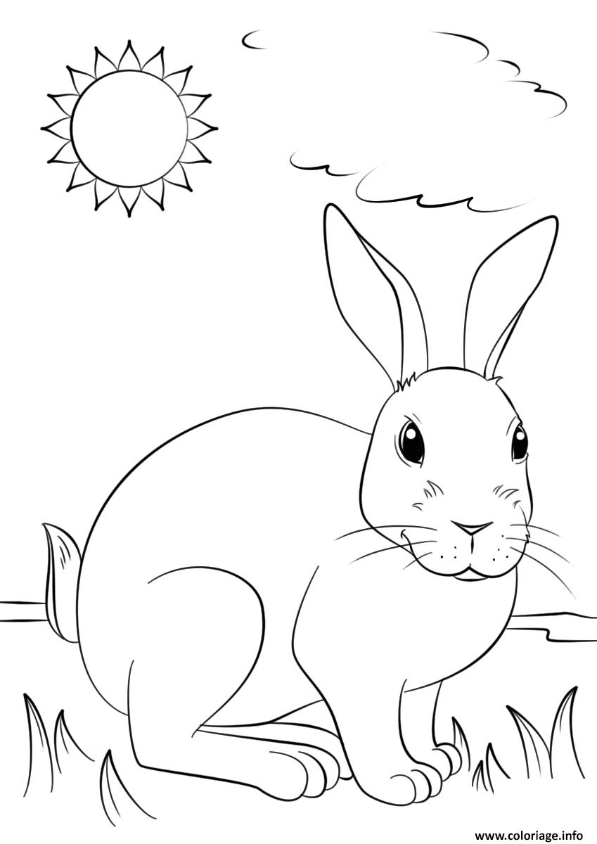Dessin un lapin realiste profite du soleil Coloriage Gratuit à Imprimer