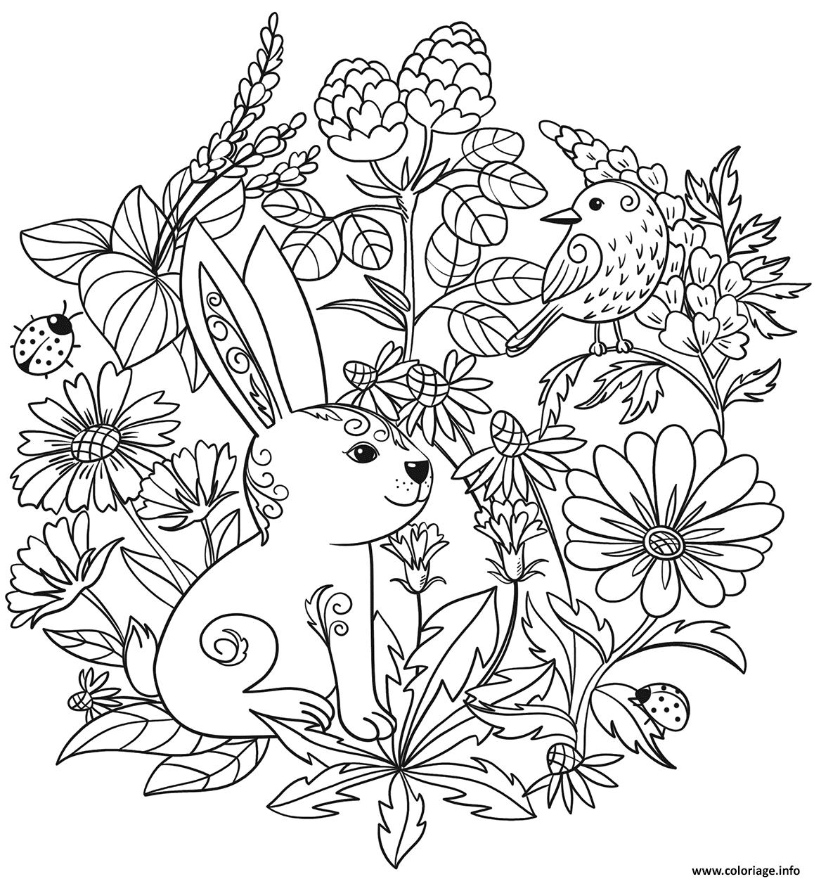 Dessin lapin et oiseaux vegetation par Lesya Adamchuk Coloriage Gratuit à Imprimer