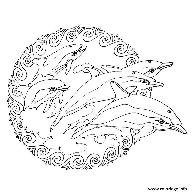Coloriage Mandala Simple Avec Des Dauphins Dessin Mandala Animaux A Imprimer