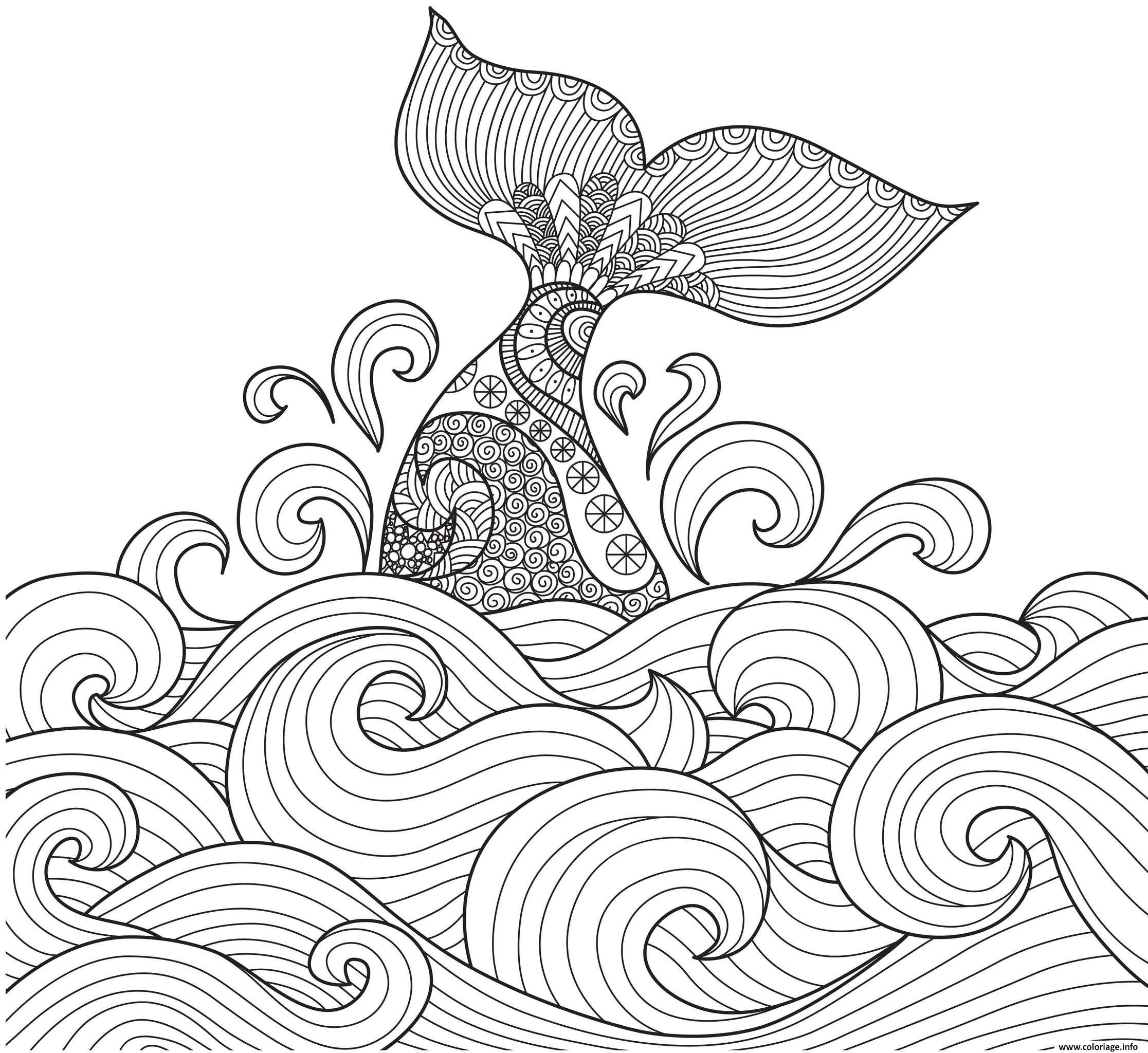 Coloriage Baleine Anti-stress Adulte Animaux Par Bimbimkha ...