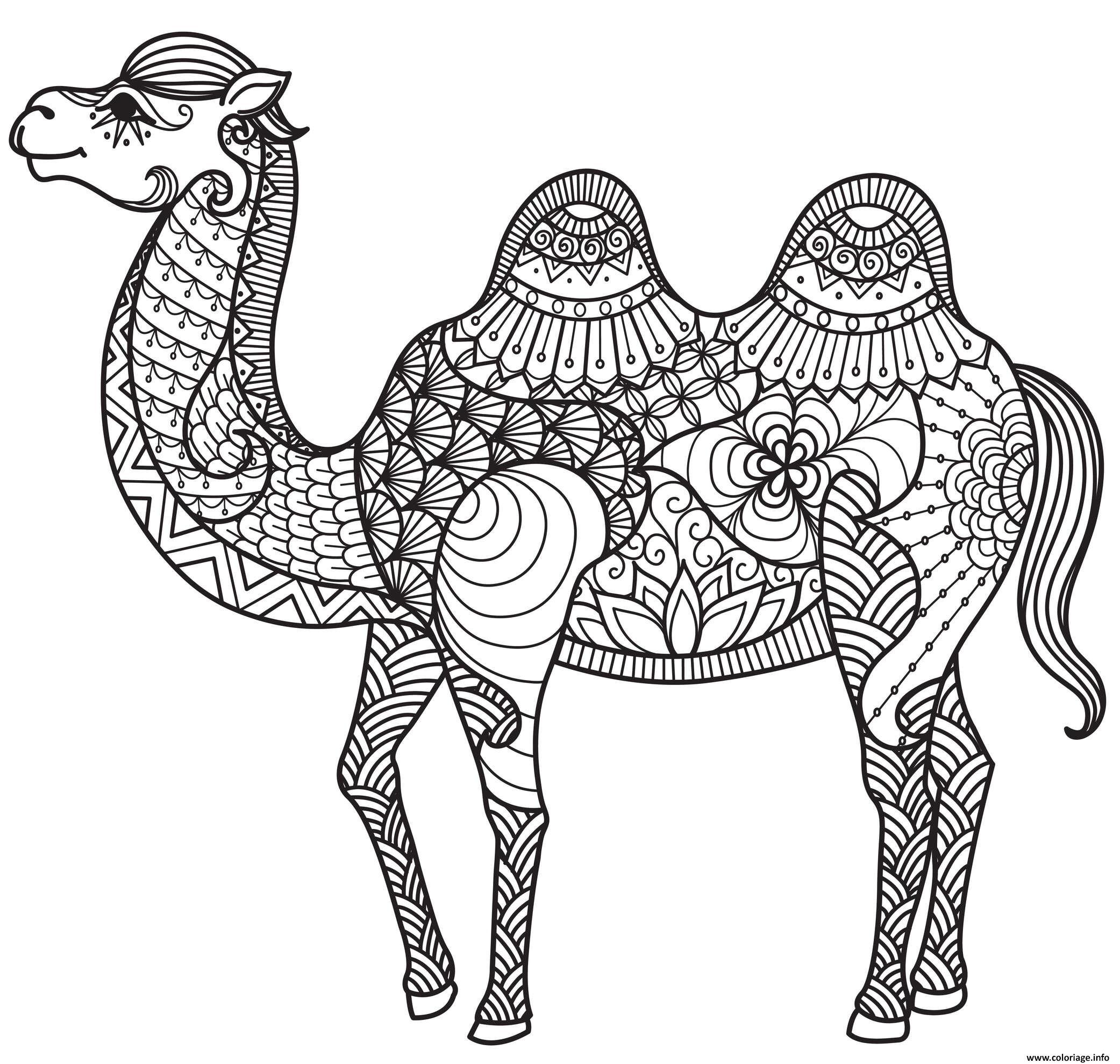 Coloriage chameau adulte animaux anti-stress - JeColorie.com