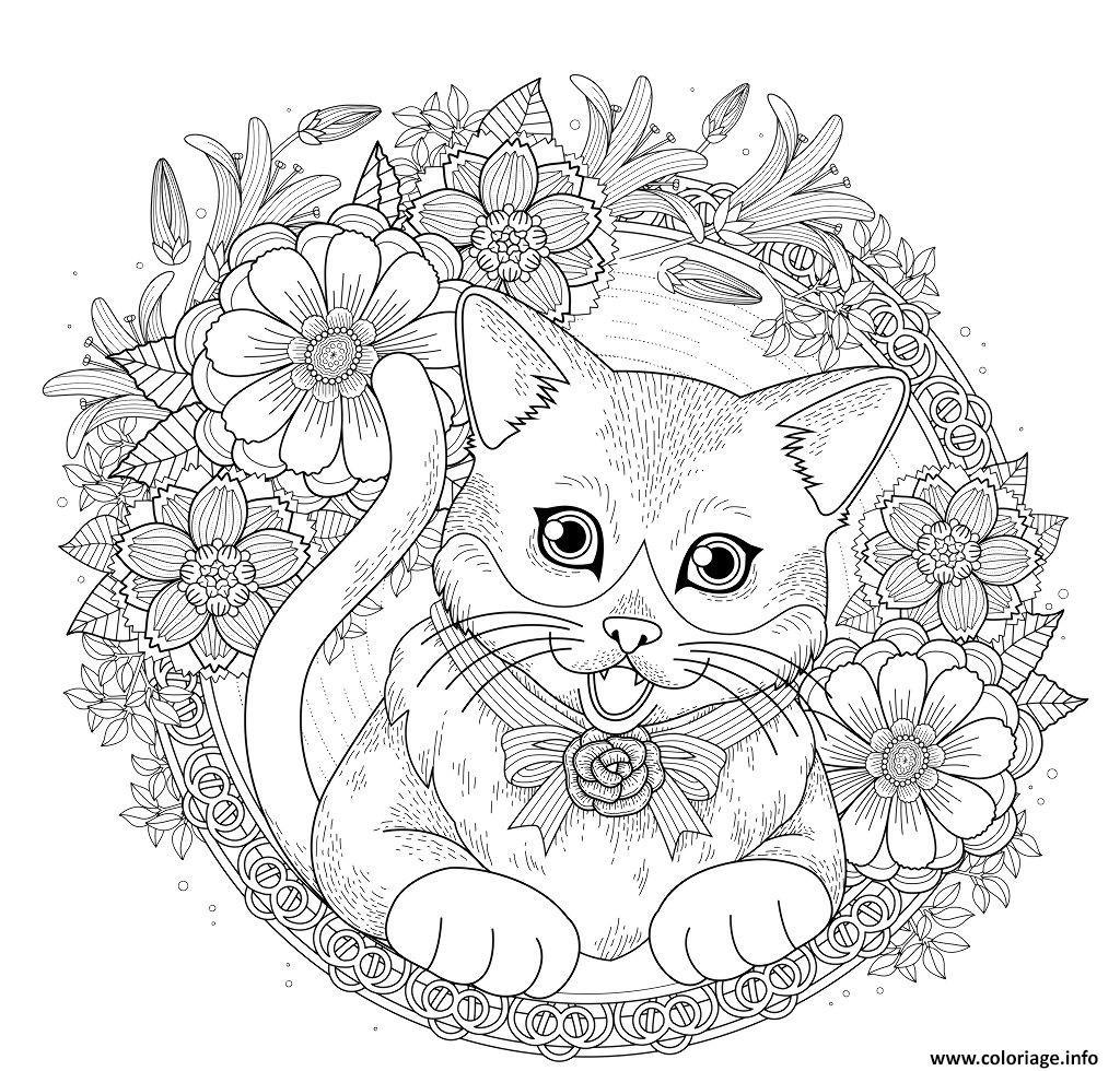 Remarquable  Mot-Clé Coloriage Chat Mandala Avec Fleurs Et Roses Dessin Chat à imprimer