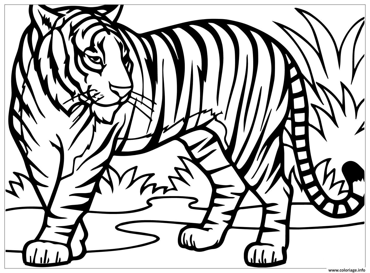 Coloriage tigre sauvage dans la nature - JeColorie.com