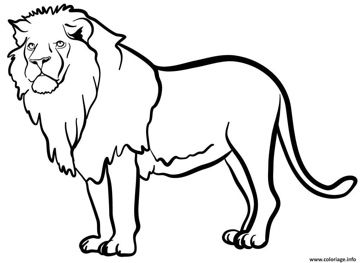 Coloriage lion animal sauvage mammifere carnivores ...