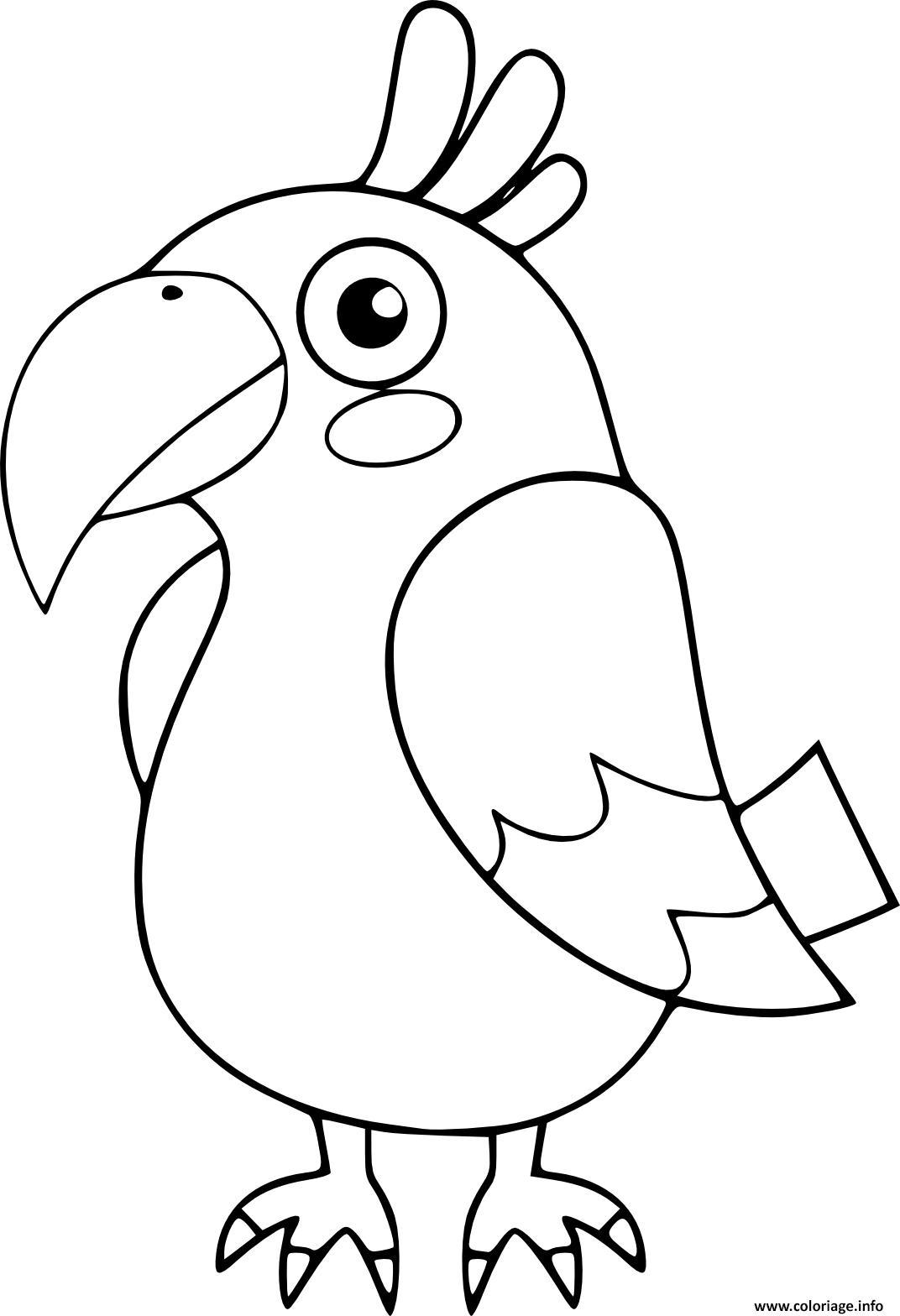 Dessin perroquet oiseau maternelle Coloriage Gratuit à Imprimer