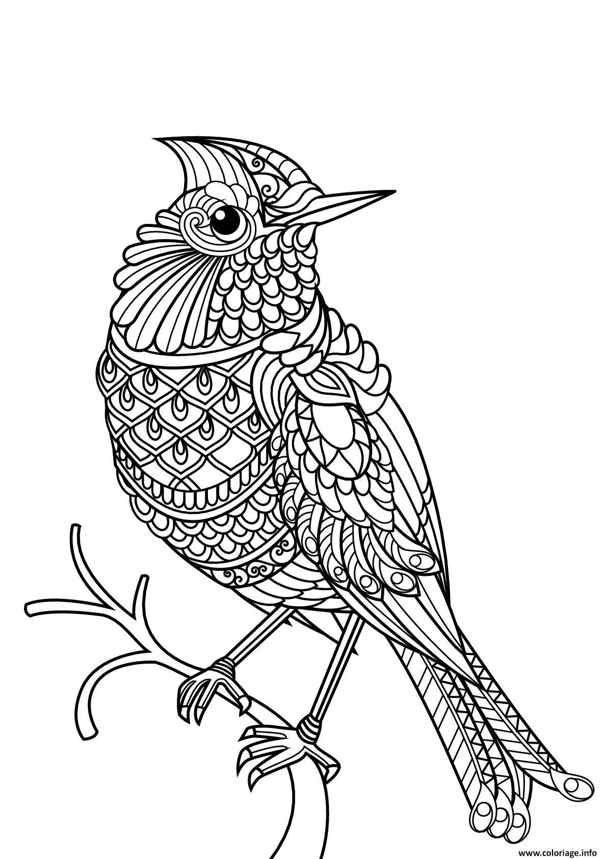 Dessin oiseau difficile adulte mandala Coloriage Gratuit à Imprimer