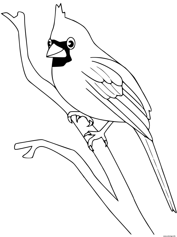 Dessin cardinal oiseau Coloriage Gratuit à Imprimer