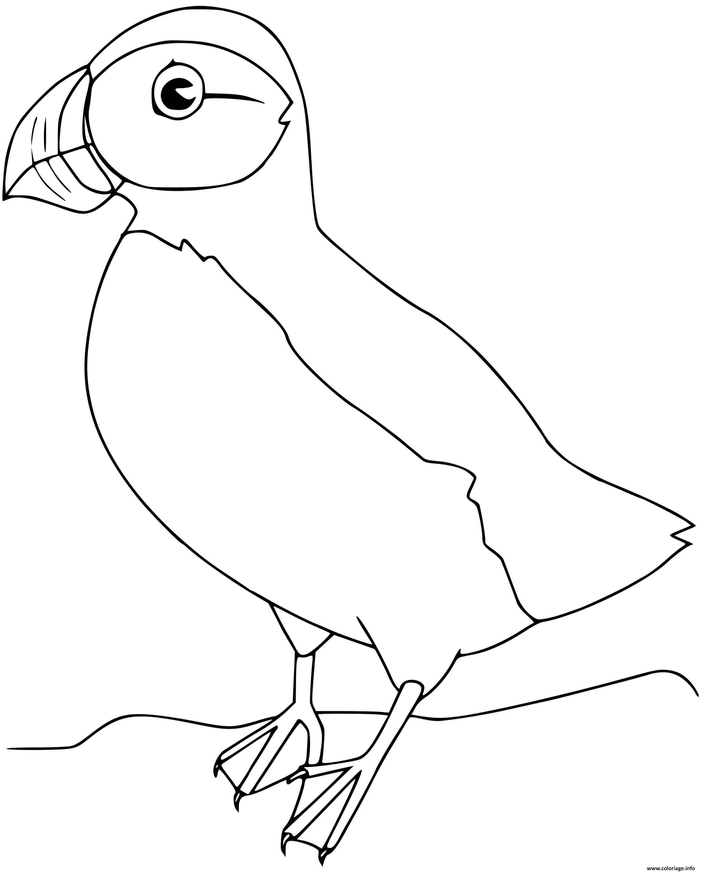 Dessin macareux oiseau Coloriage Gratuit à Imprimer