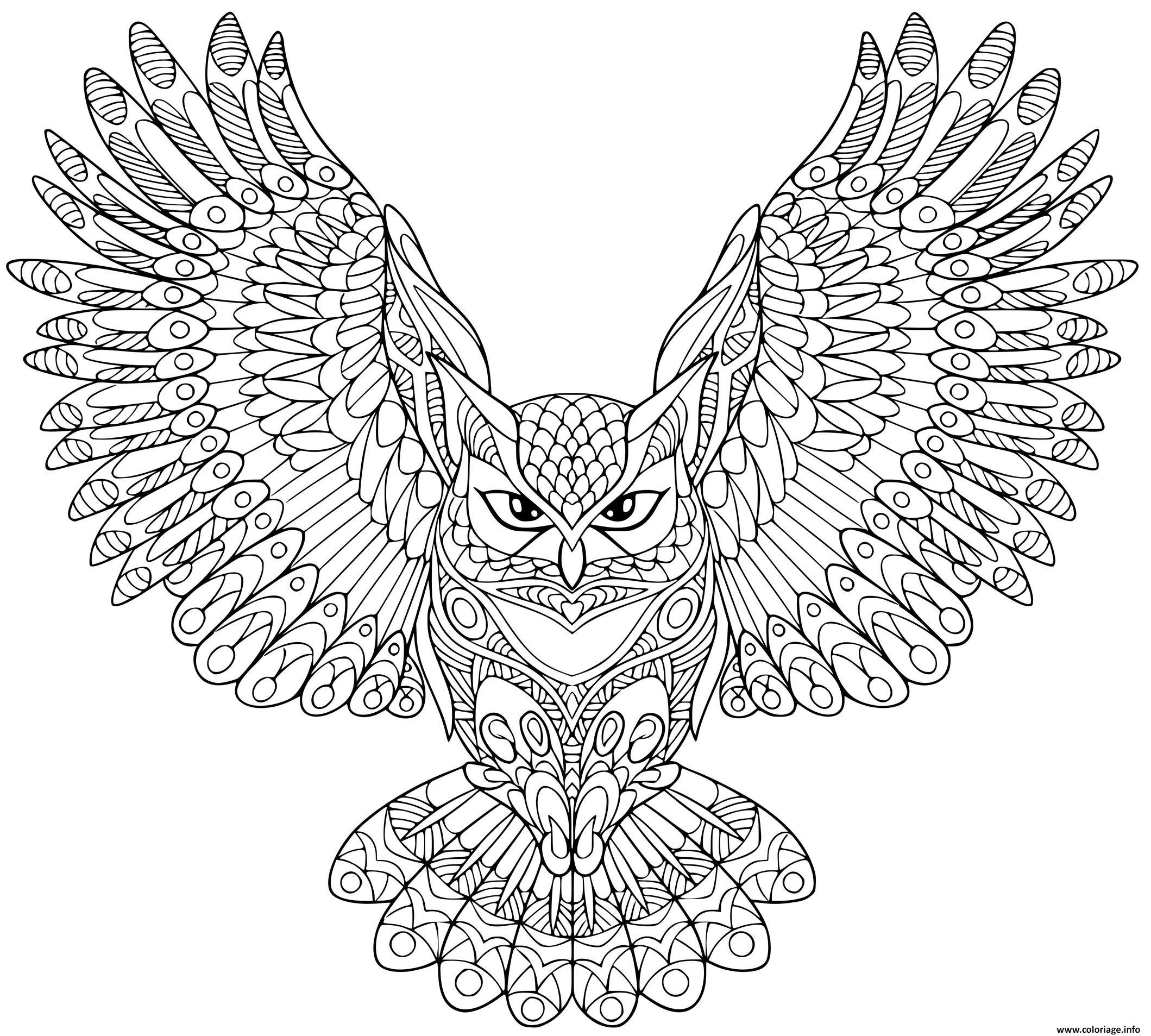 Dessin zentangle aigle hibou halloween adulte Coloriage Gratuit à Imprimer