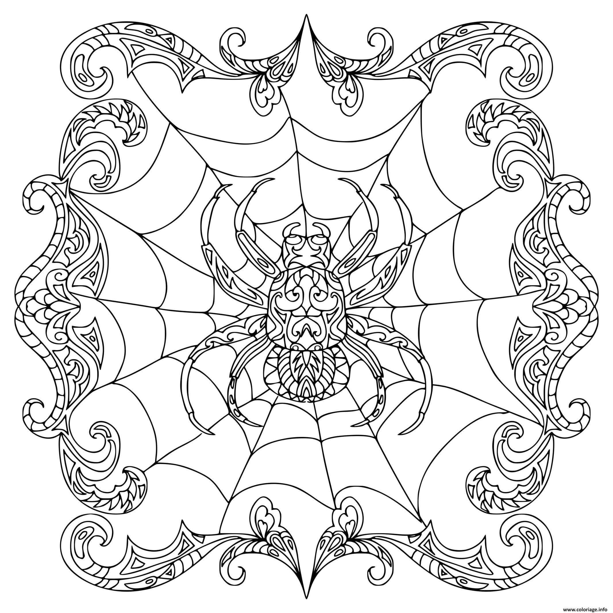 Dessin spider zentangle araignee Coloriage Gratuit à Imprimer