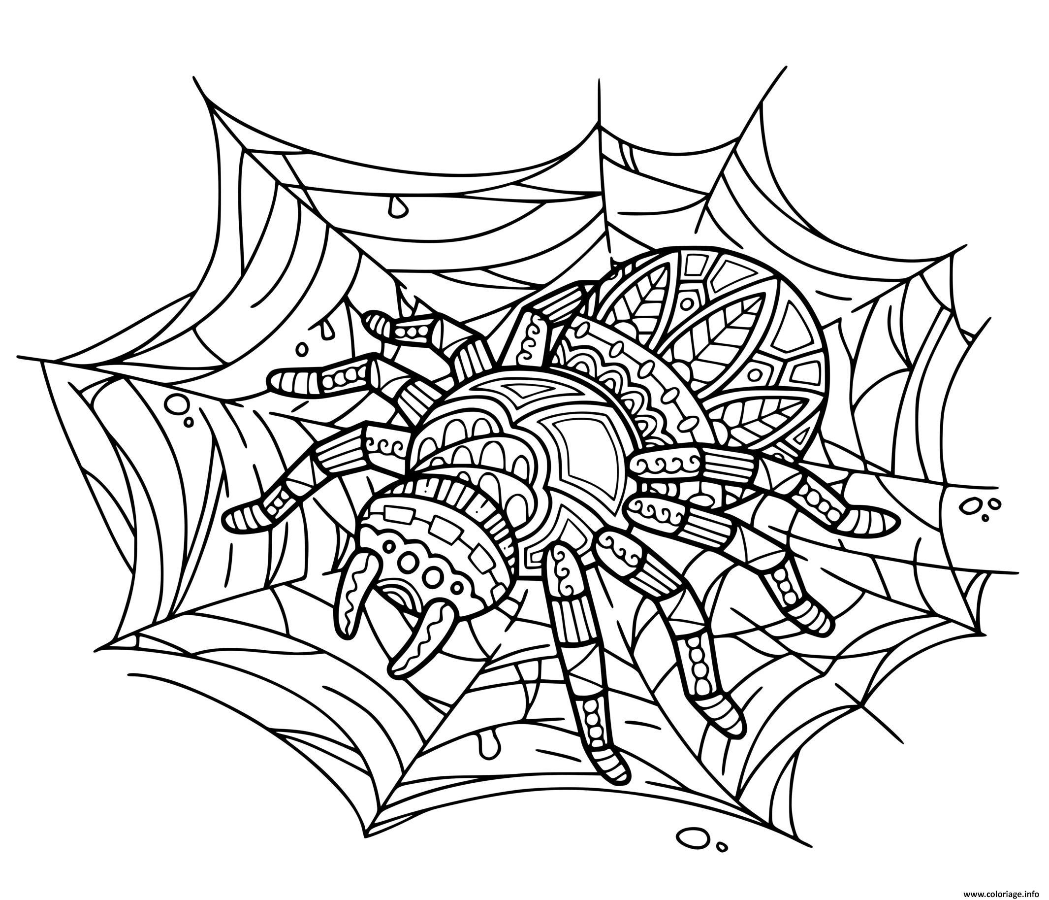 Dessin araignee zentangle Coloriage Gratuit à Imprimer
