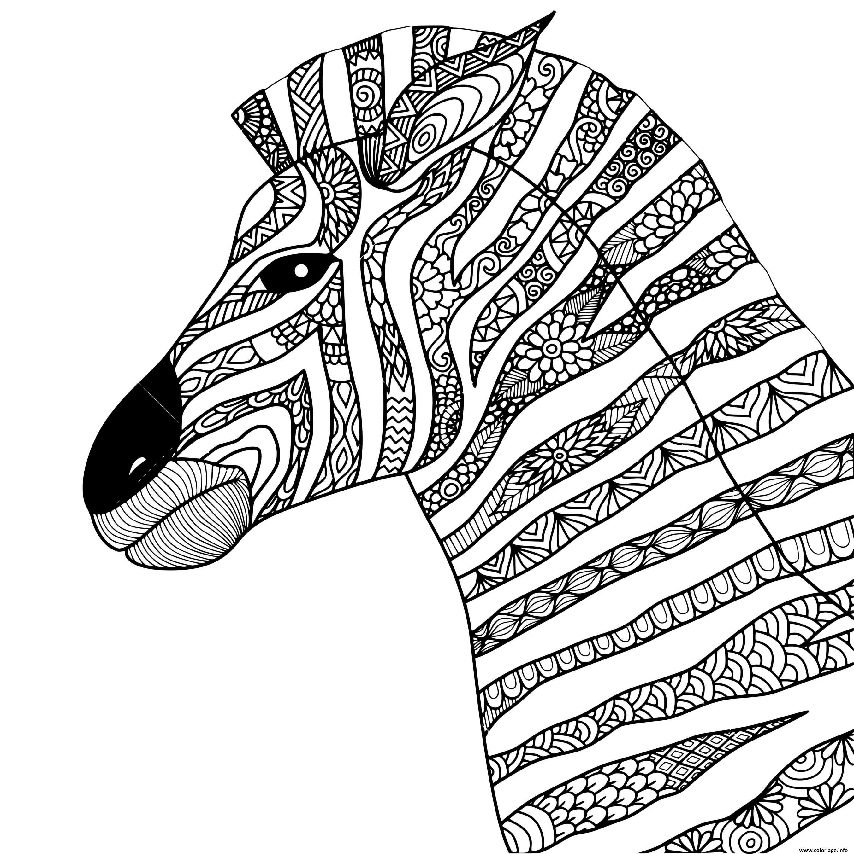 Coloriage mandala animaux style zentangle zebre ...