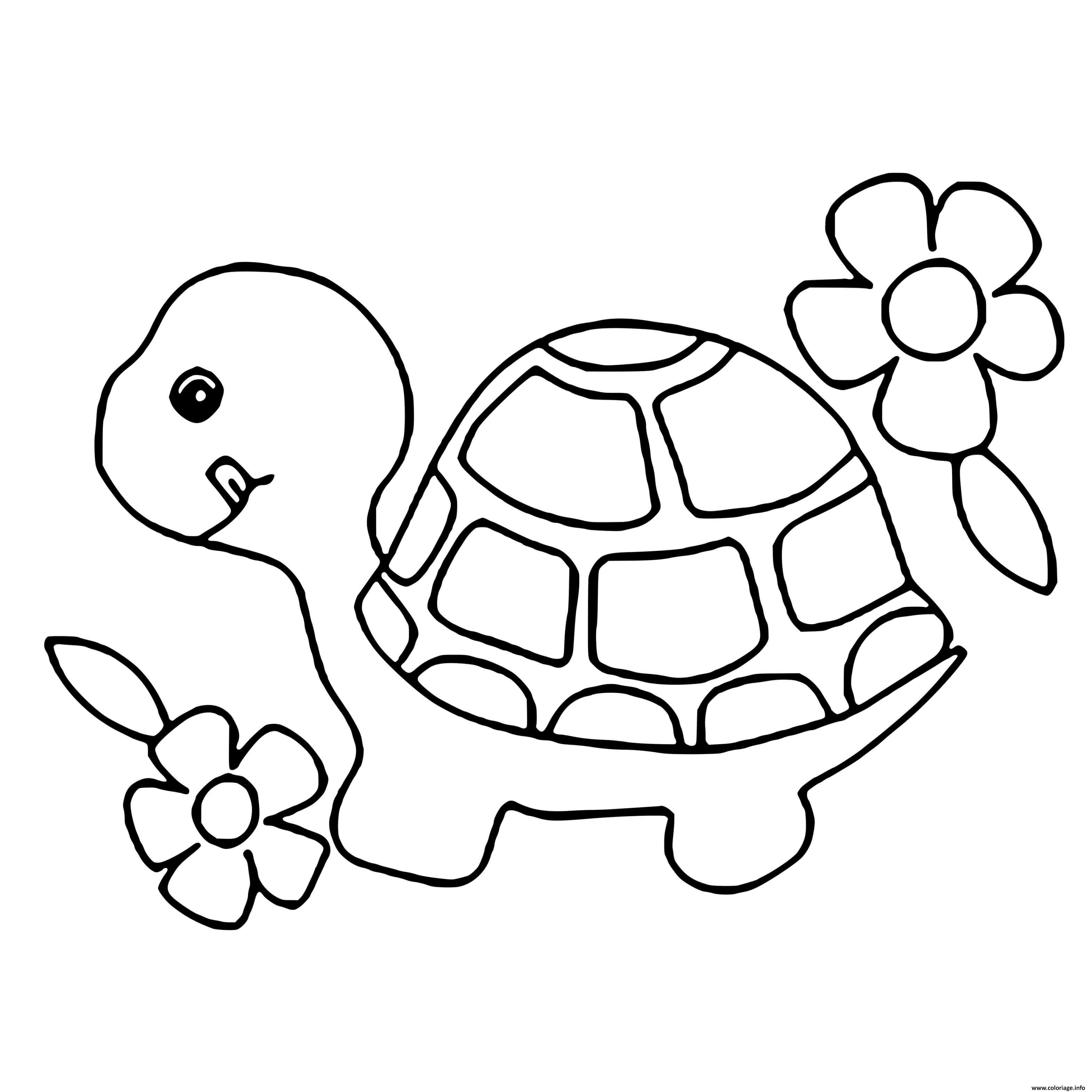 Coloriage Animaux Pour Enfants Facile Tortue Dessin Enfants A Imprimer