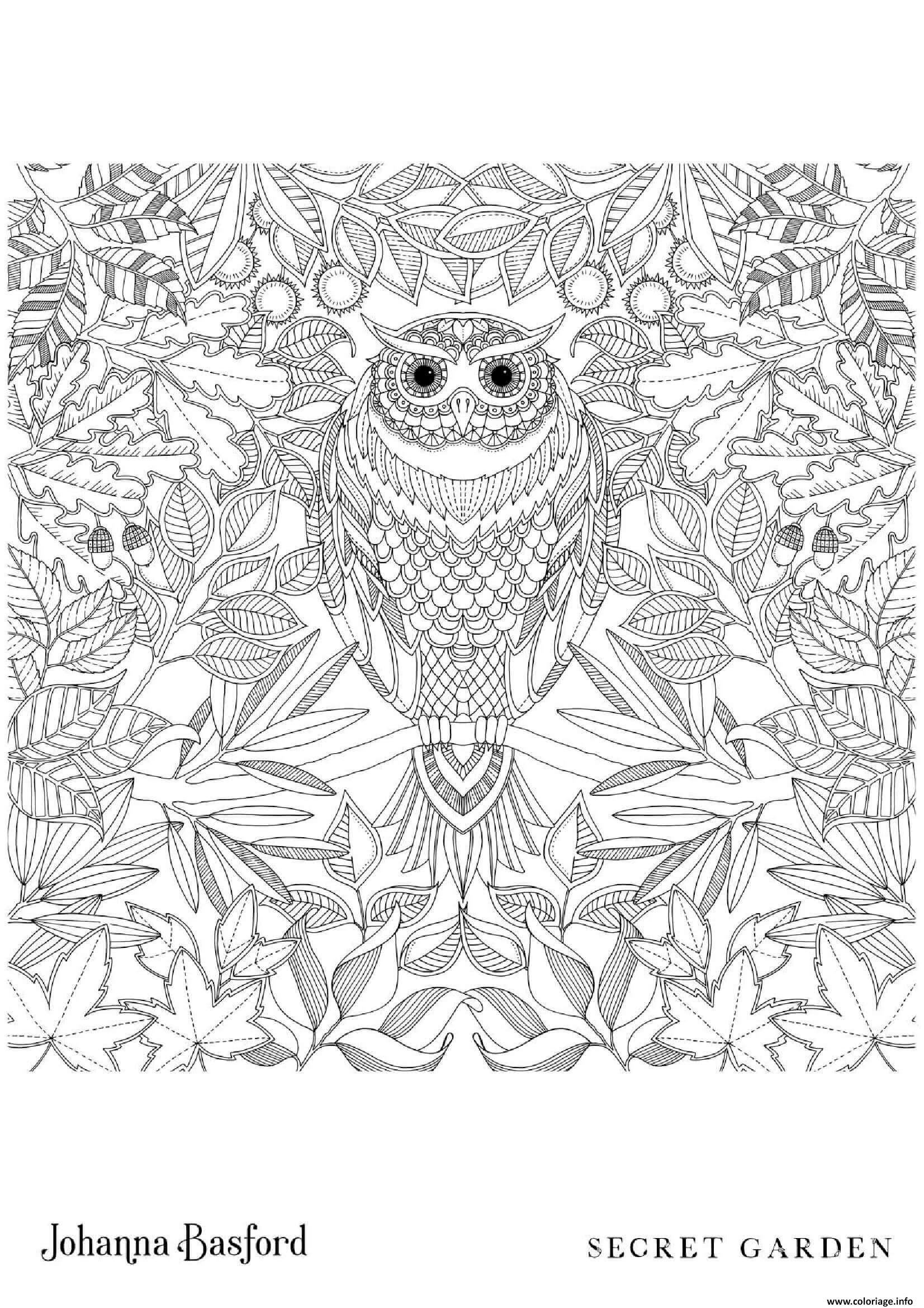 Coloriage Owl From Secret Garden Dessin à Imprimer