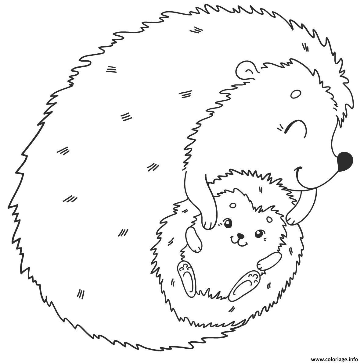 Coloriage herisson et son bebe   JeColorie.com