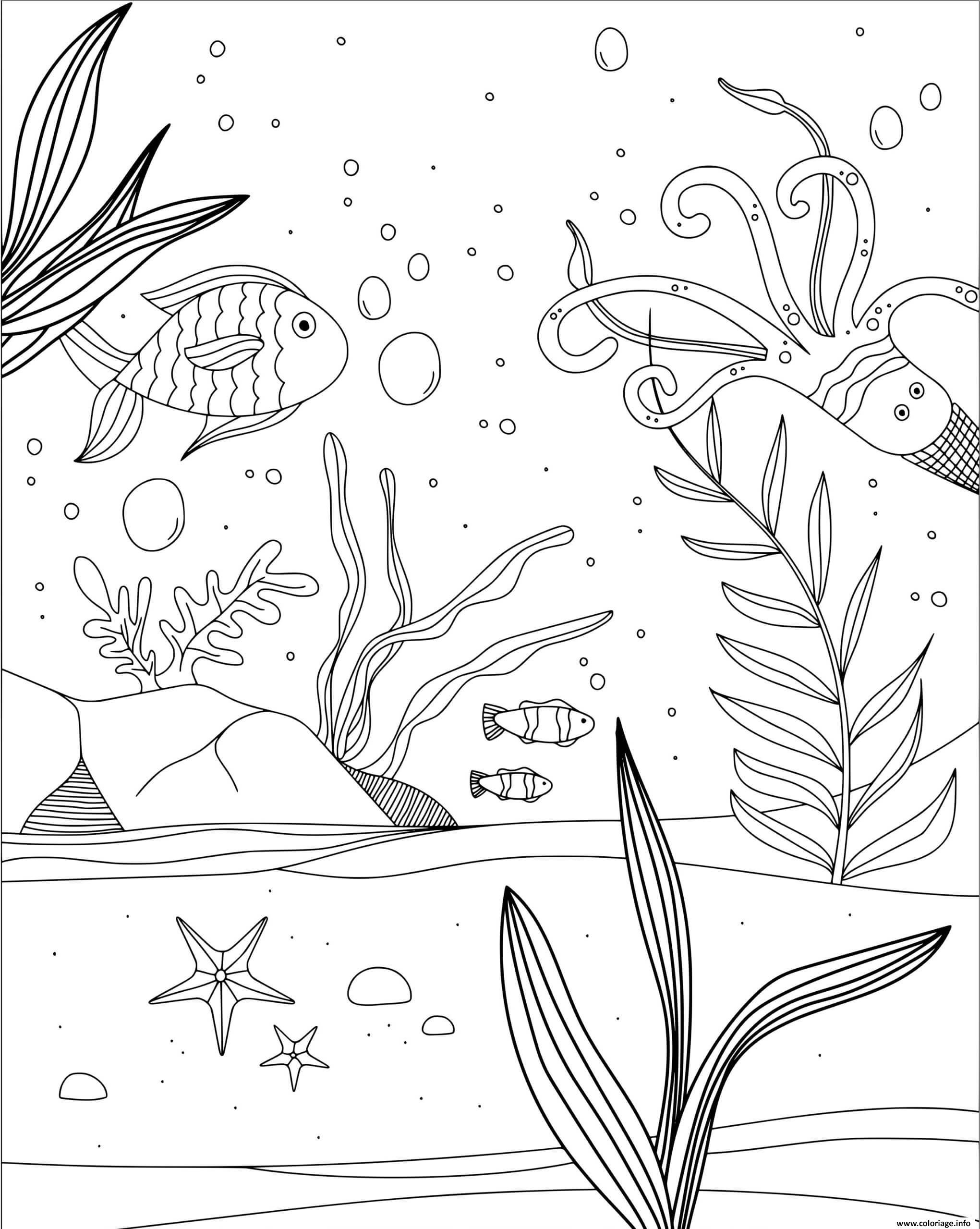 Coloriage Fond Marin Algues Et Poissons De Mer Dessin Mer à imprimer