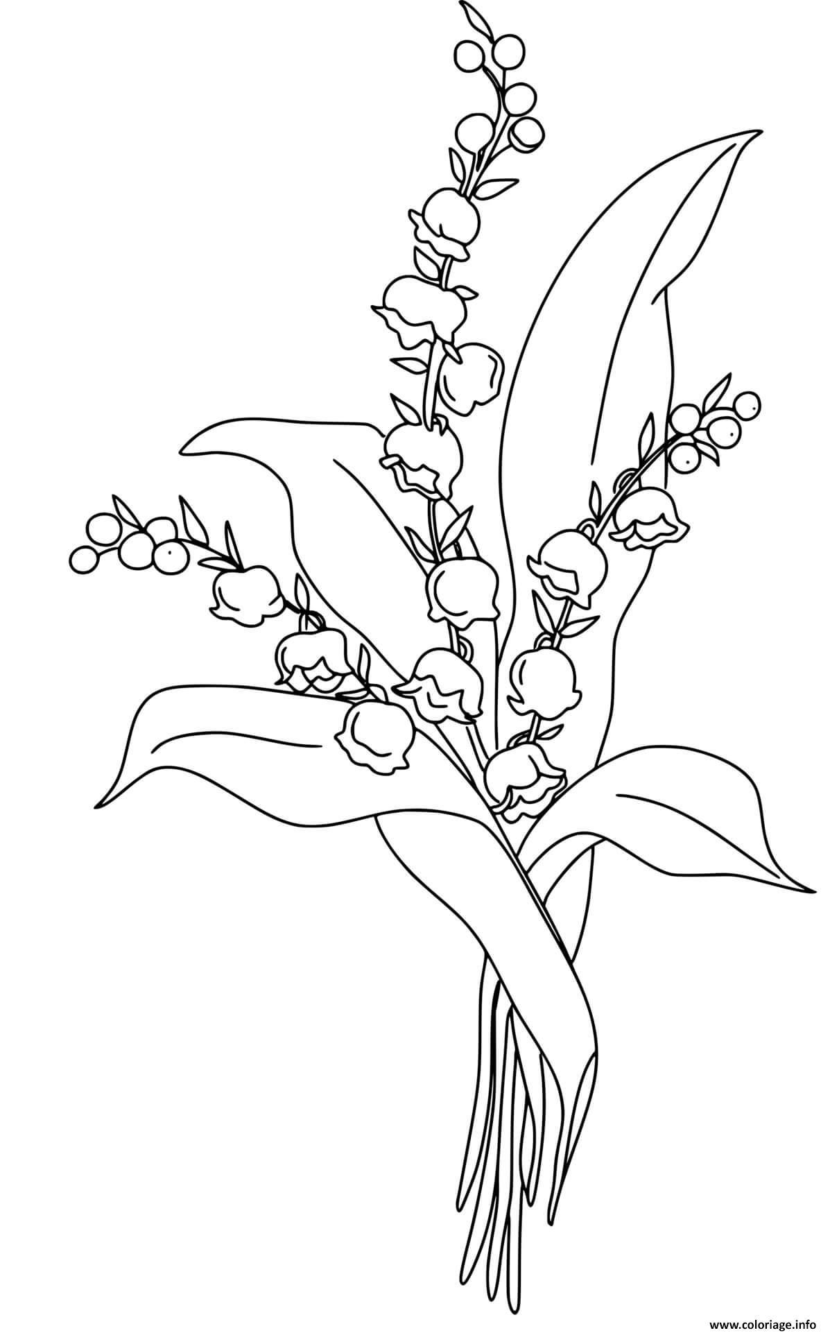Dessin porte bonheur fleur muguet 1er mai Coloriage Gratuit à Imprimer