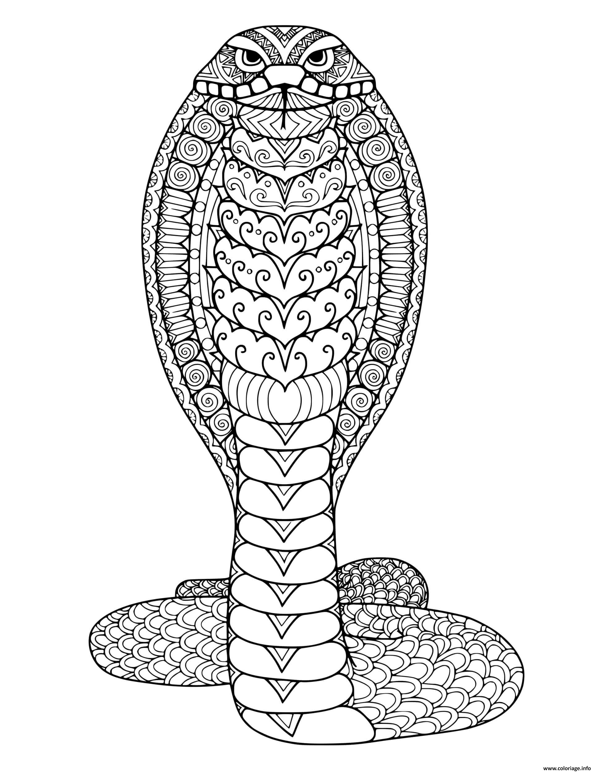 Dessin serpent mandala adulte Coloriage Gratuit à Imprimer