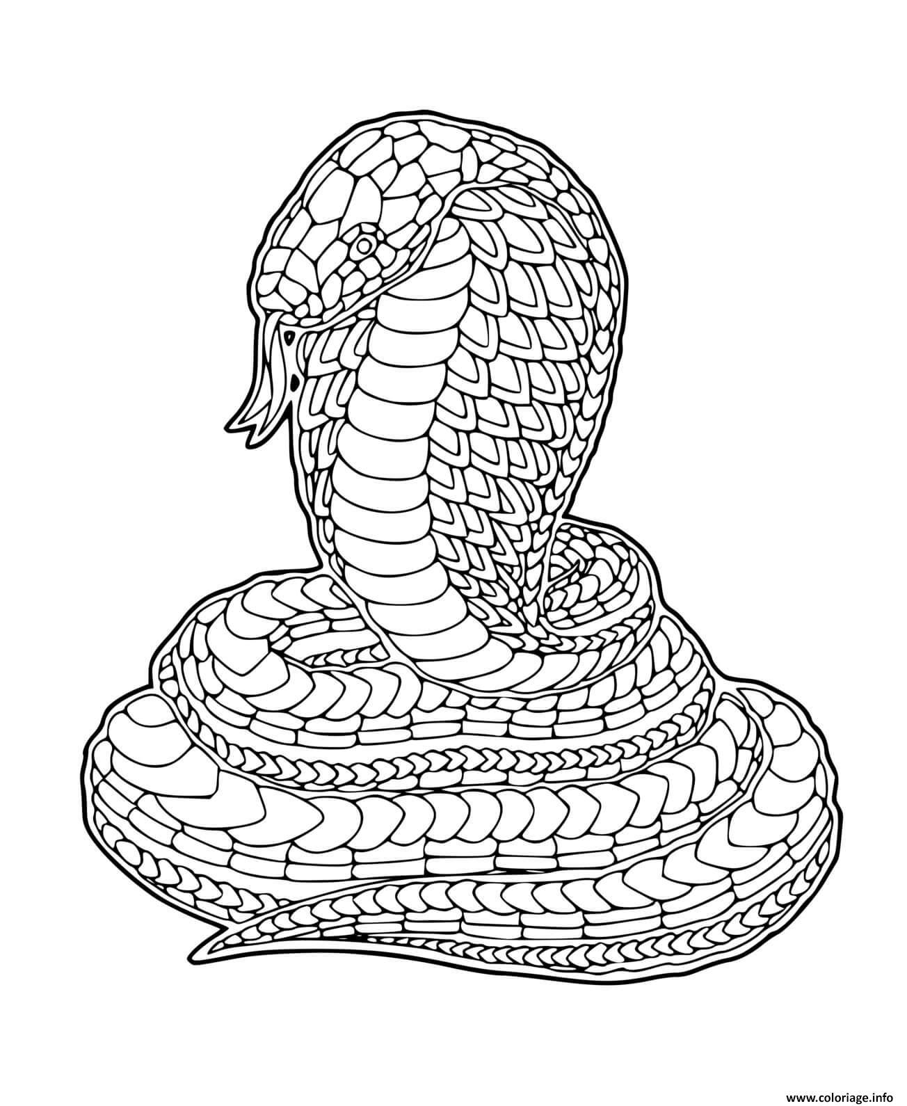 Dessin cobra zentangle Coloriage Gratuit à Imprimer