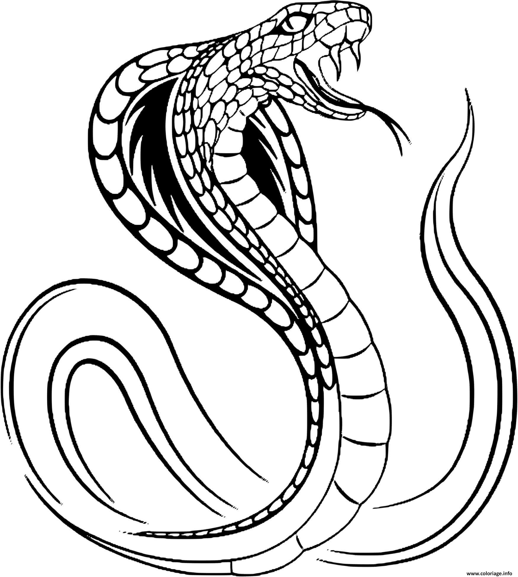 Dessin serpent cobra Coloriage Gratuit à Imprimer