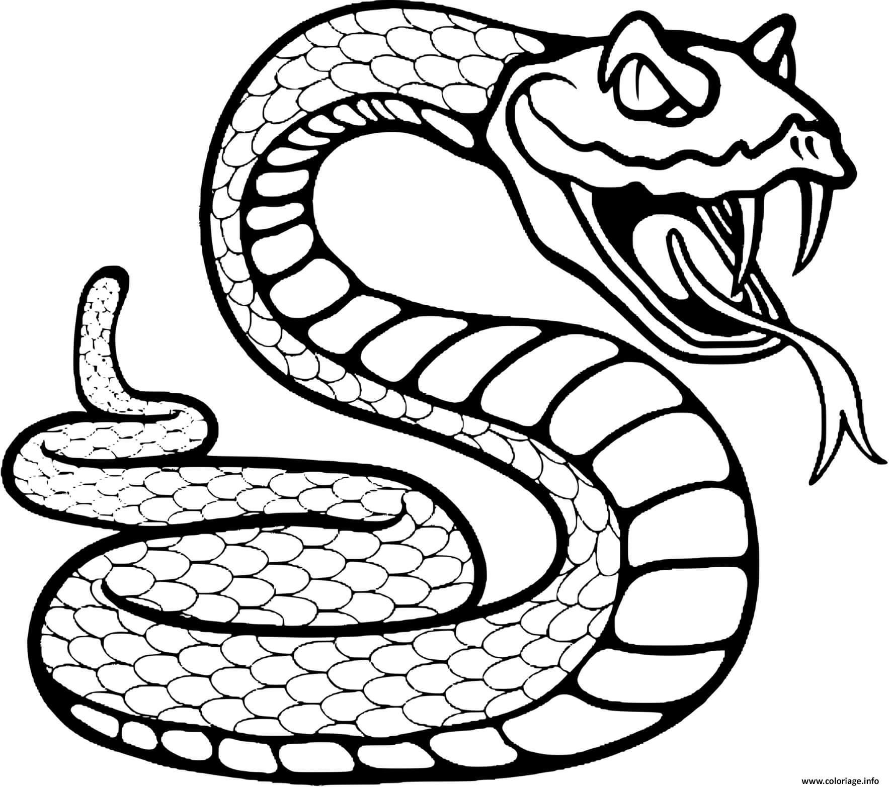 Dessin serpent a sonnette Coloriage Gratuit à Imprimer