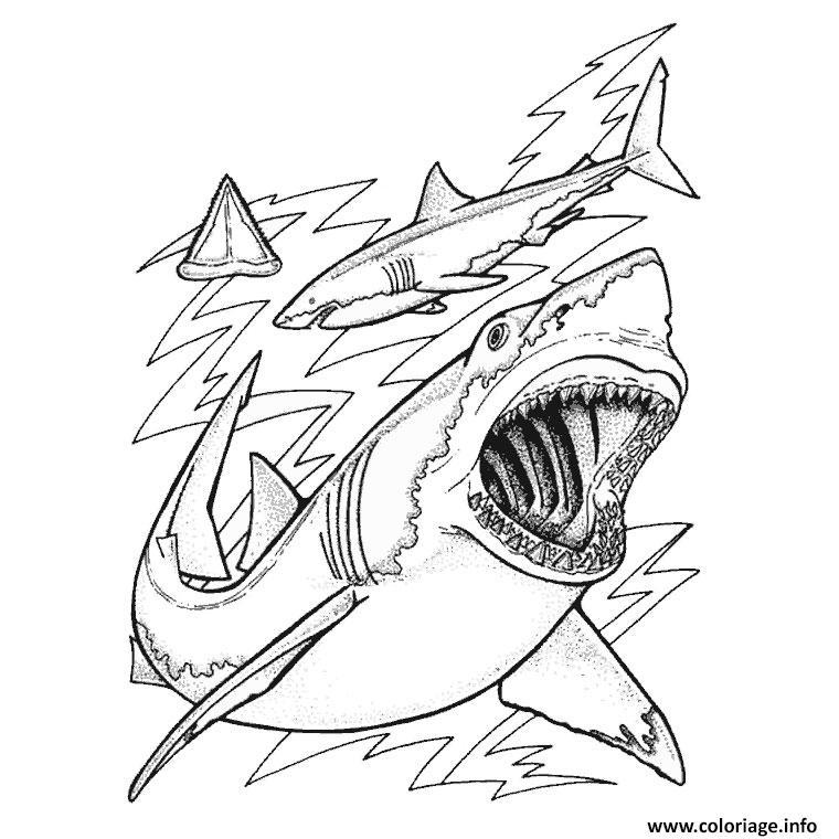 Dessin requin baleine Coloriage Gratuit à Imprimer