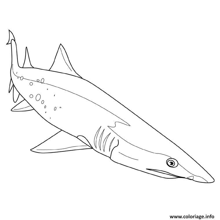 Dessin requin scie Coloriage Gratuit à Imprimer